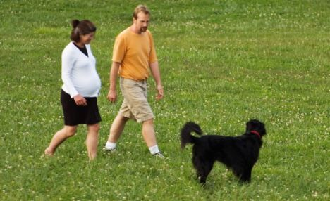 Man and Pregnant Woman Walking Through Park With Dog Cherokee Park Louisville Kentucky. Image shot 2005. Exact date unknown.